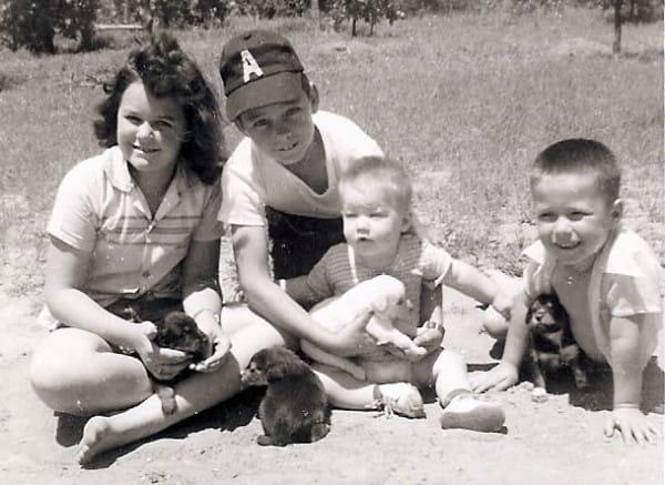 Fotografía de unos niños pequeños sentados con unos perritos