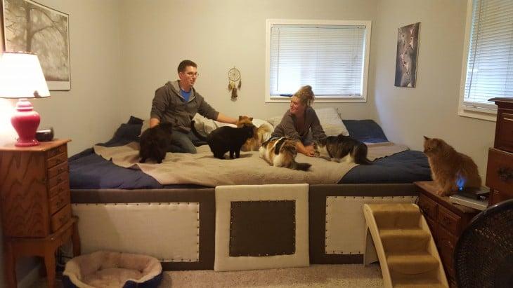 pareja construyo una escalera para que los perros pequeños pudieran subir a la cama sin problema