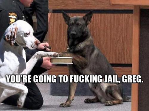 perro diciendole que hizo mál las cosas