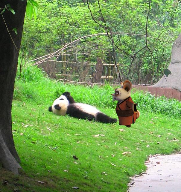 oso panda con el de kung fu panda