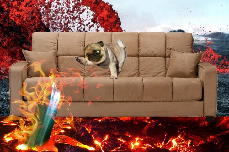 pug conintentando salvar calabaza del fuego