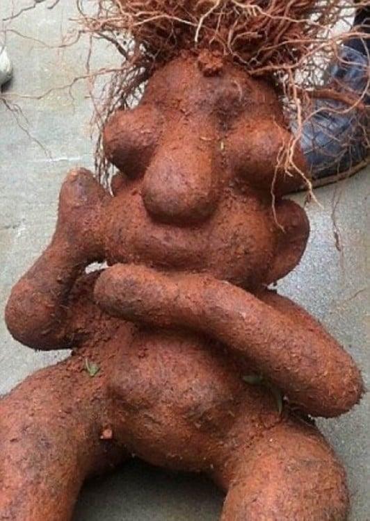 Raíz de una verdura con figura prehispánica