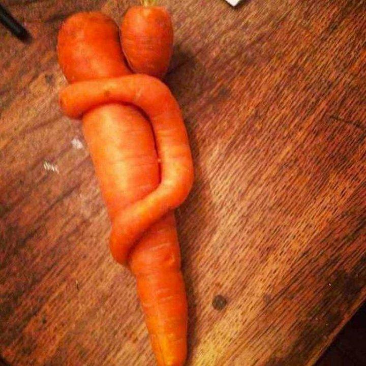 Zanahoria que tiene pegada a un costado otra pequeña zanahoria que parece estar abrazadas