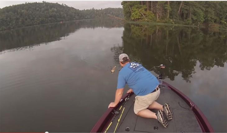 gatito nadando hacia el bote para ser rescatado