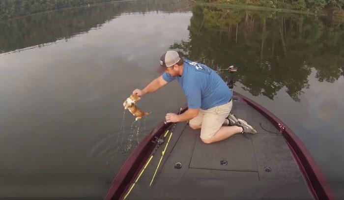 hombre rescatando al gatito
