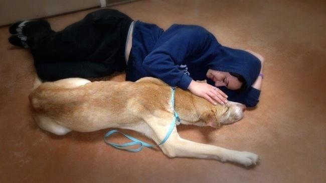 Amanda acostada a un lado de un perro que fue rescatado por ella