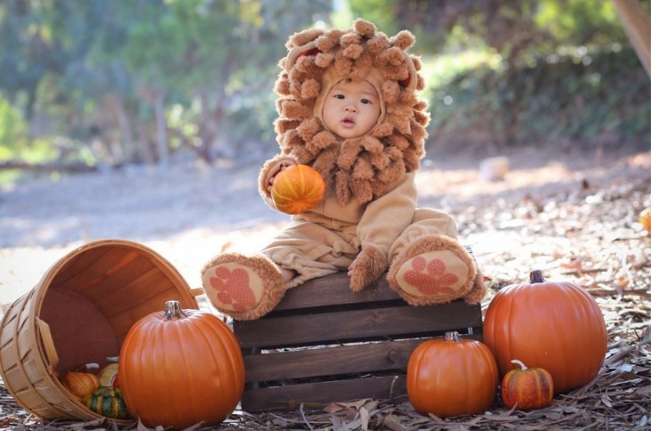 Niño disfrazado de leon