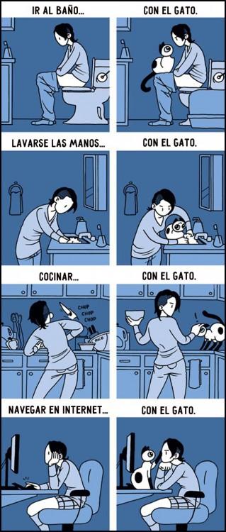 comic sobre como es la vida junto a un gato