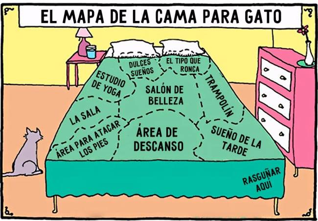 comic sobre la logica de como utilizar la cama