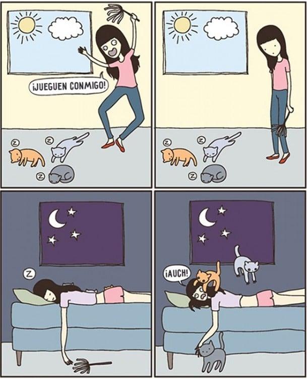 comic de como un gato seescapa y llega siempre por las madrugadas