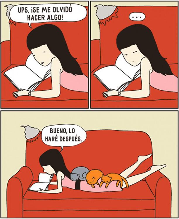 comic de como es que un gato se te sube hasta que impide que hagas todos tu demas cosas por realizar en casa