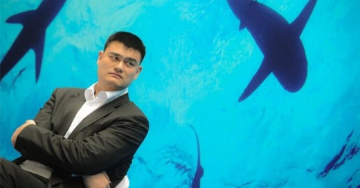 Gracias a Tao se reduce la casa de tiburones