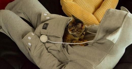 Si eres un amante de tu mascota y no puedes vivir sin ella aquí una prenda que te permitirá llevarla a todos lados