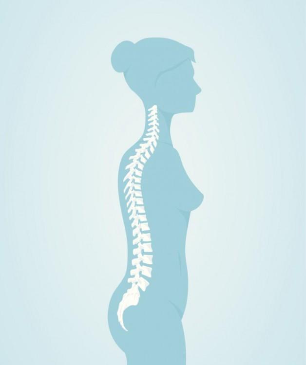 dibujo que muestra el cuerpo de una mujer enfocándose en la espina dorsal