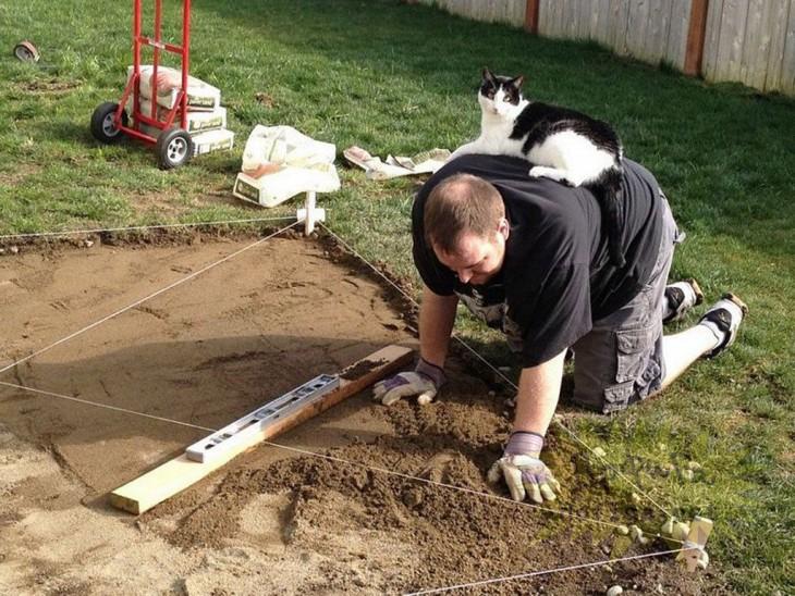 hombre haciendo cuadro para hortalizas en su casa