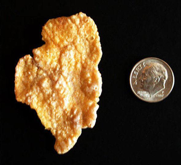 cornflake en forma del estado de Illinois