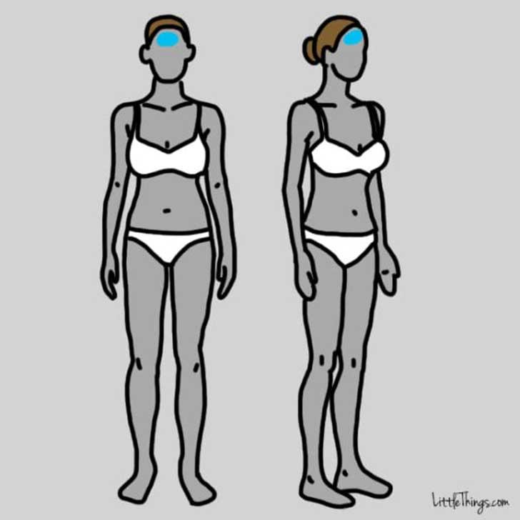 dibujos del cuerpo de una mujer en las que se les resalta la parte frontal de la cabeza
