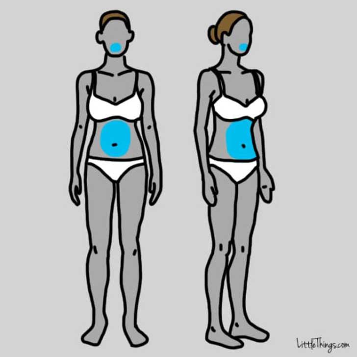 dibujos del cuerpo de dos mujeres resaltando su paladar y su estomago