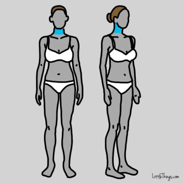 dibujo del cuerpo de una mujer donde se resalta el área del cuello
