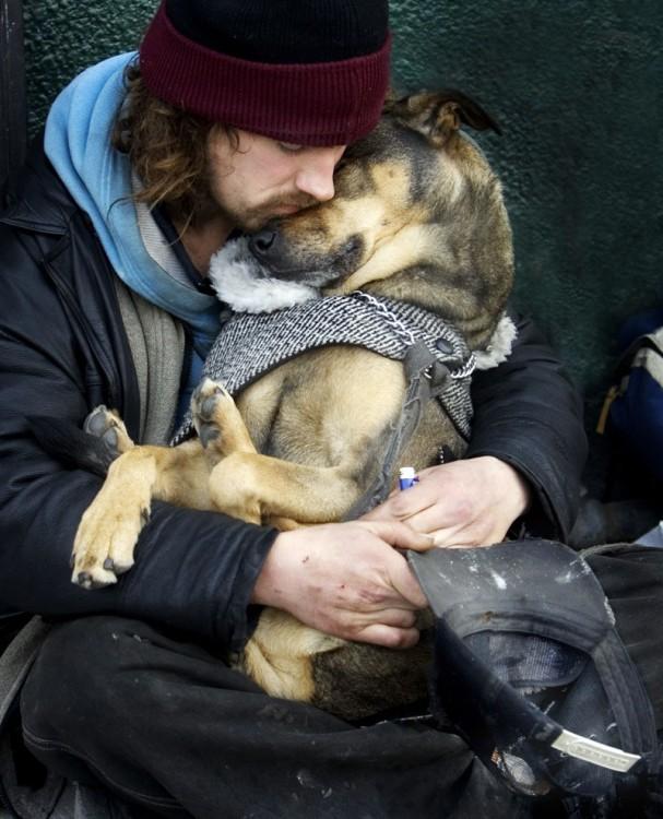 perro y hombre de la calle