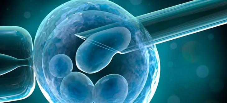 fertilizaciónin vitro da lugar al quimerismo