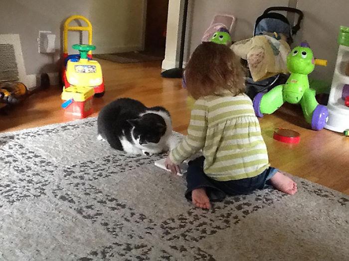 niña se entera que su gato tienen artritis y le ayuda a leerle un cuento