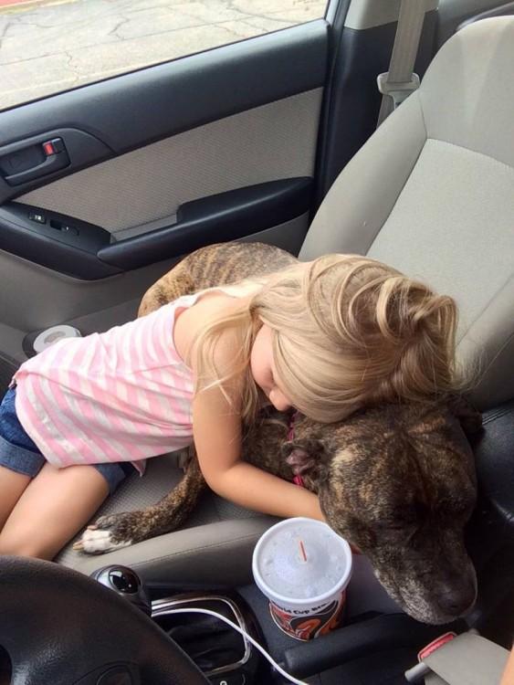 niña abrazando al perro que iba a recibir inyecciones