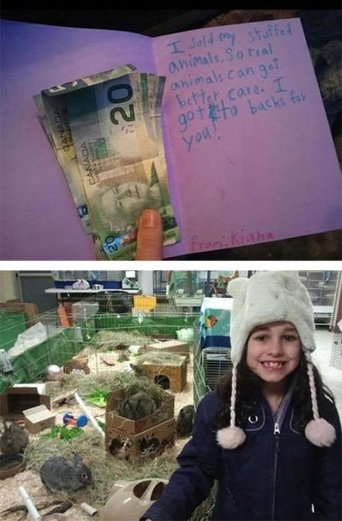 niña vendió sus peluches para poder ayudar a los animales de un refugio