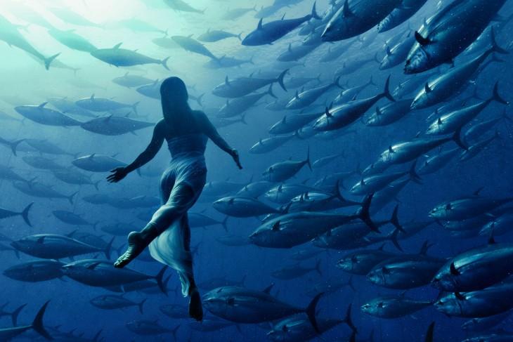 bailarina nadando con una camada de atunes