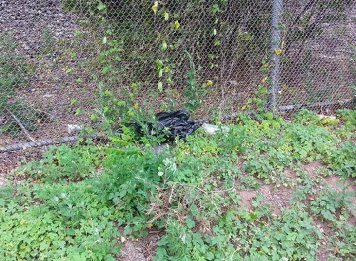 perrita en una bolsa negra tirada en un callejón