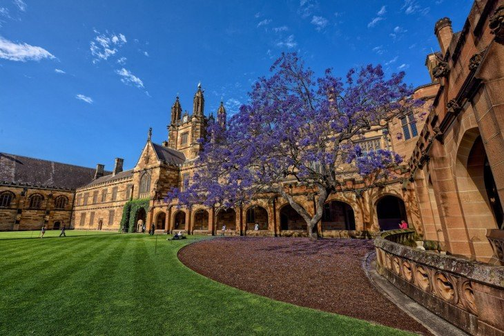 instalaciones de la Universidad de Sydney en Nueva Gales del Sur, Australia