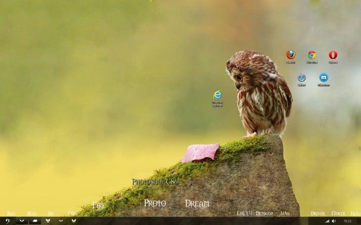 fondo de escritorio de un búho sobre una piedra mirando hacia el icono de internet explorer