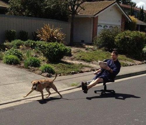 foto de un perro jalando a un chico que va sentado en una silla de escritorio por una calle