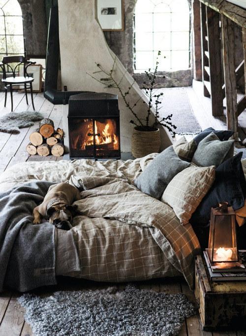 habitación rustica con muebles de madera y chimeneas con un perro acostado sobre una cama