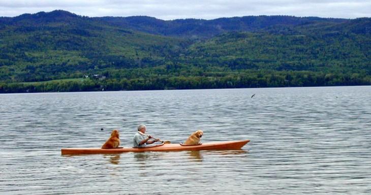 hombre navegando por un lago dentro de un kayak junto a sus dos perros