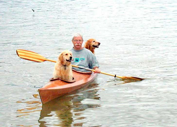 hombre paseando a sus dos perros dentro de un kayak en estados unidos