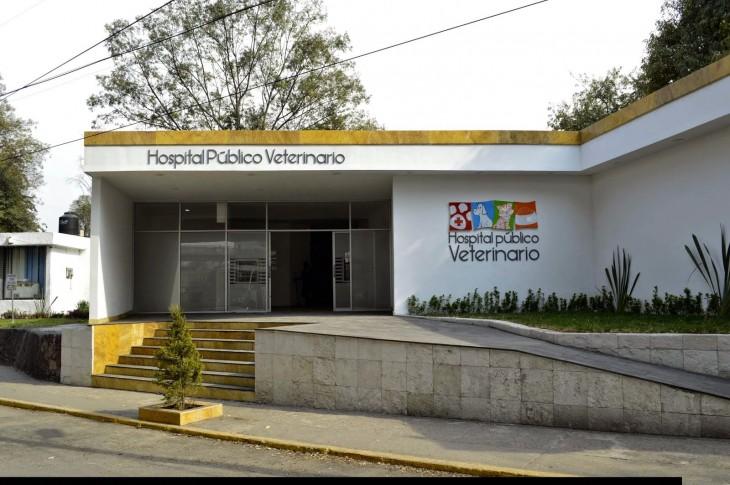 local donde esta ubicado el Hospital Público Veterinario en Naucalpan, México