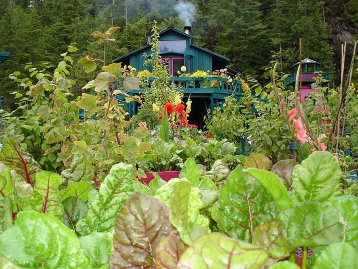 plantas dentro de la isla flotante en Vancouver