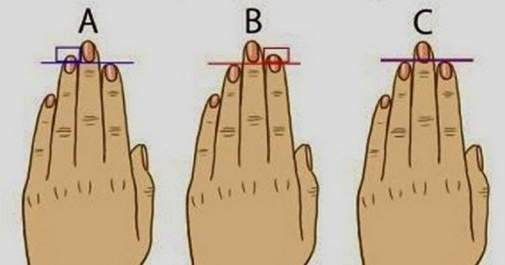 longitud de tus dedo índice y tu dedo anular.