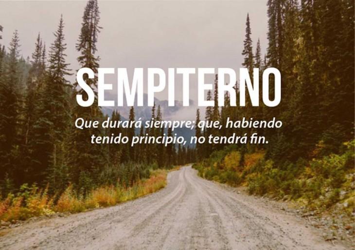 paisaje de un camino entre un bosque con letras que definen la palabra sempiterno