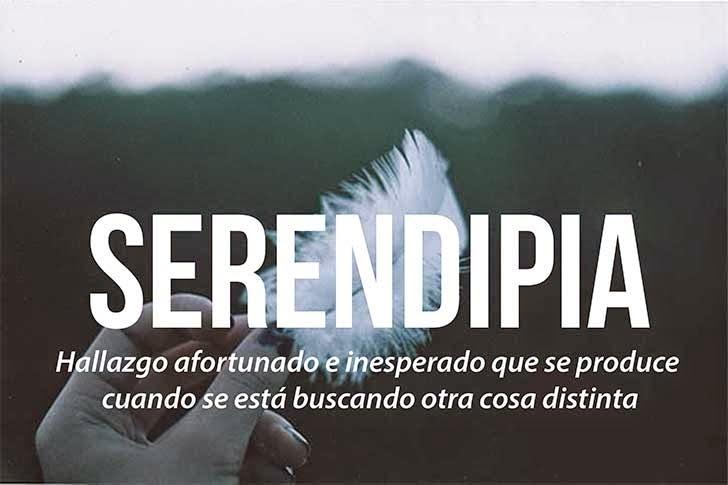 foto de una mano sosteniendo una pluma que define la palabra serendipia