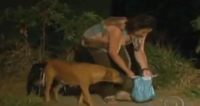 mujer dando de comer en una bolsa a una perra callejera