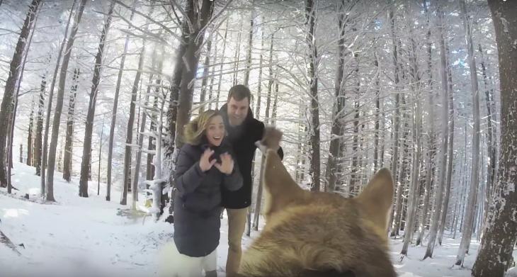 pareja de esposos saludando a una cámara atada a su perro