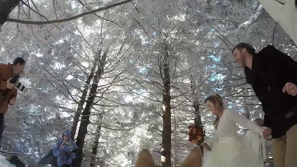 pareja de novios agarrados de la mano el día de su boda en una toma capturada por su perro