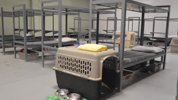 celdas y casas de perros dentro de una prisión en los Estados Unidos