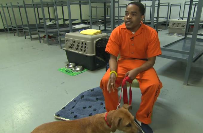 Preso sentado sosteniendo a un perro con una correa