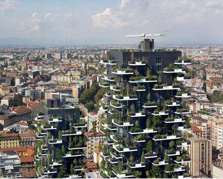 Torre de los Cedros, proyecto en Suiza