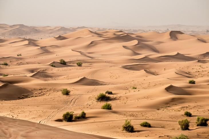 Razones para no visitar Egipto (5)