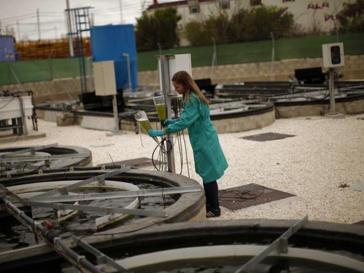 Operadora de agua y plantas de tratamiento de aguas residuales