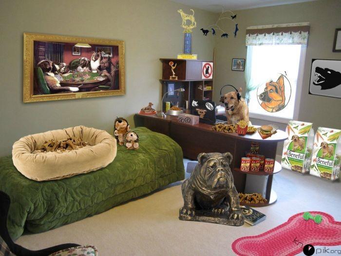 decoración de una recamara para un perro en casa
